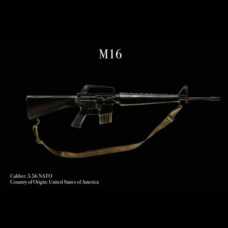 m16 luxarmory scaled 800x800
